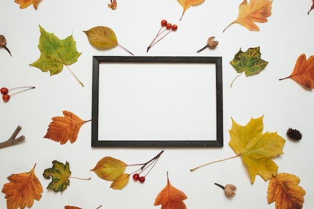 Composição de outono. moldura de madeira com folhas de outono frescas no fundo branco