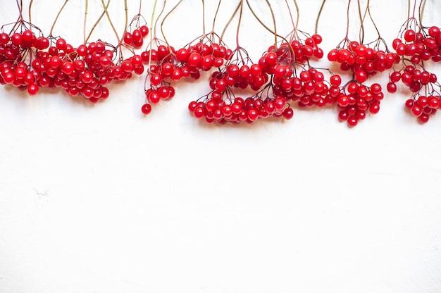 Composição de outono. moldura feita de bagas vermelhas viburno