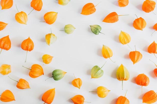 Composição de outono. moldura feita de flores coloridas de physalis em fundo cinza pastel. outono, conceito de outono. camada plana, vista superior, espaço de cópia