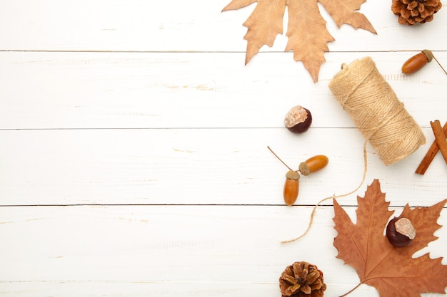 Composição de outono, moldura feita de pinhas, bolotas e castanhas em branco.