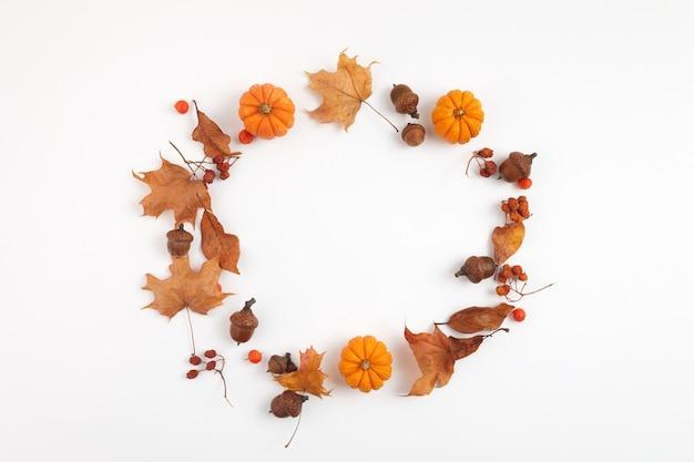 Composição de outono. quadro redondo de folhas secas e abóboras em fundo branco. vista do topo. postura plana.