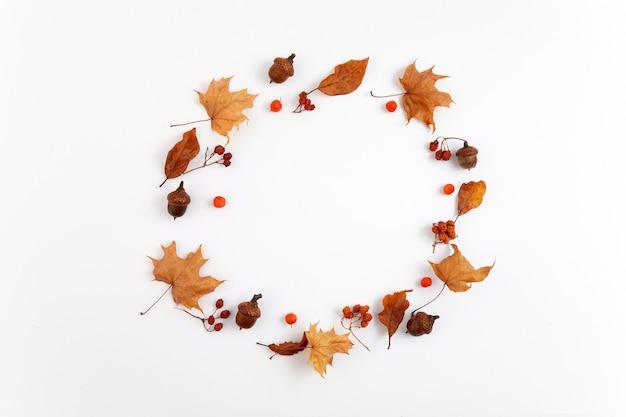 Composição de outono. quadro redondo de folhas secas em fundo branco. vista do topo. postura plana.