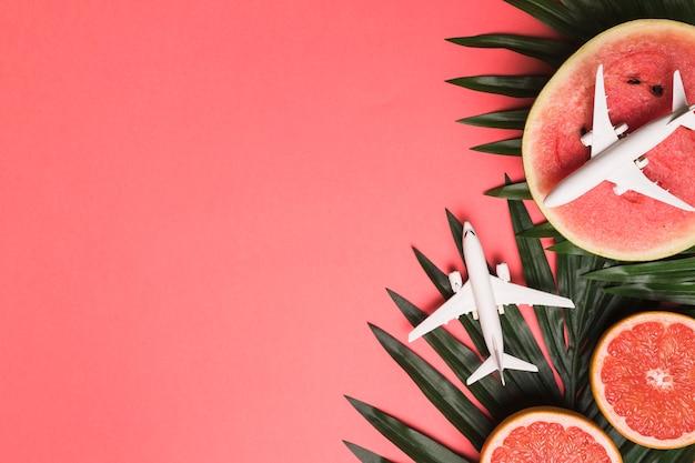 Composição, de, pequeno, aviões, planta, folhas, toranja, e, melancia
