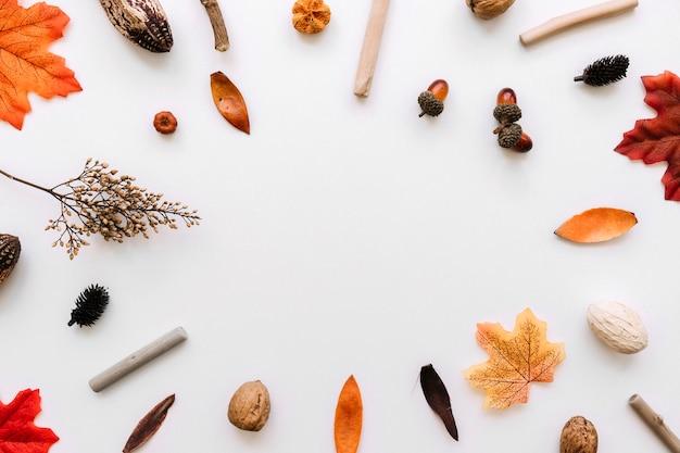 Composição de quadro de elementos outono