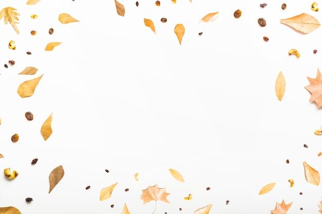 Composição de quadro outono com centro em branco
