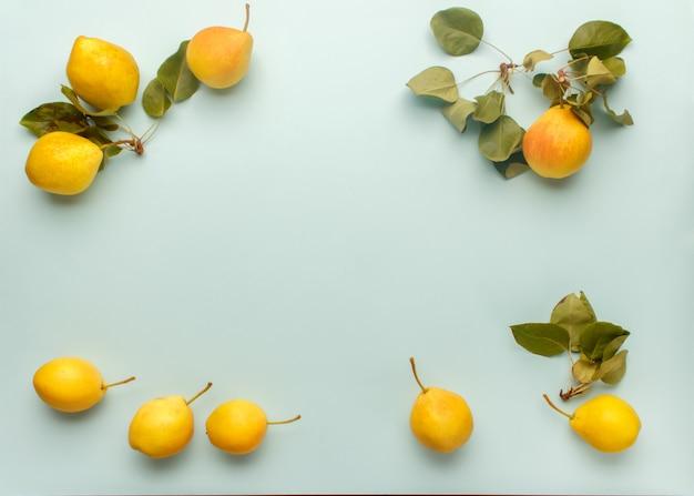 Composição de quadro outono de peras amarelas maduras com folhas em um azul pastel