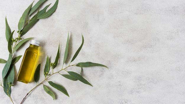 Composição de spa para azeite de estilo de vida saudável