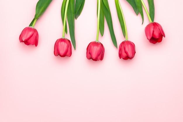 Composição de tulipas vermelhas em fundo rosa. vista plana leiga, superior, cópia espaço. dia das mulheres, dia das mães, conceito de primavera. decoração de flores