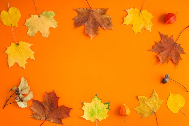 Composição do conceito do outono da vista superior criativa plana leigos. folhas de outono brilhantes secas espaço da cópia do fundo do quadro de papel laranja.