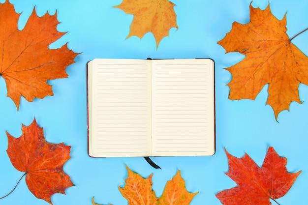 Composição do outono: folhas de plátano brilhantes em um fundo azul com um bloco de notas branco.