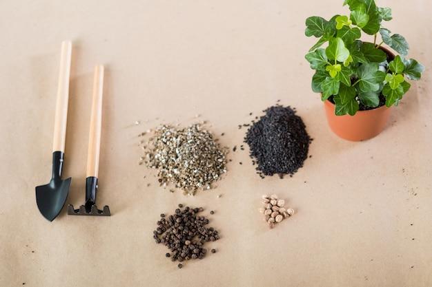 Composição do transplante de plantas. conceito de cuidados da flora em casa. planta de casa, ferramentas de jardim e solo para vasos.