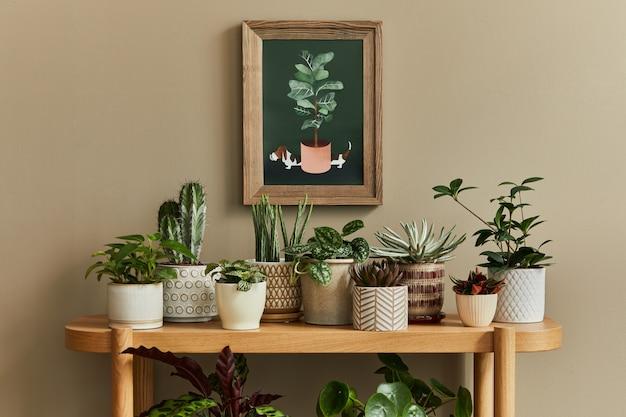 Composição elegante do interior do jardim com moldura, cheia de belas plantas, cactos, suculentas, plantas de ar em vasos de design diferente. conceito de jardinagem doméstica.