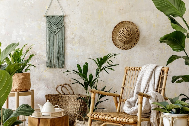 Composição elegante e floral do interior da sala de estar com poltrona de vime, muitas plantas tropicais em vasos de design.