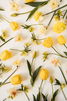 Composição floral com padrão de tulipas e flores de narciso em branco