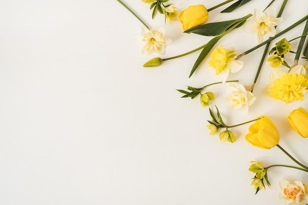 Composição floral com tulipas e flores de narciso em branco
