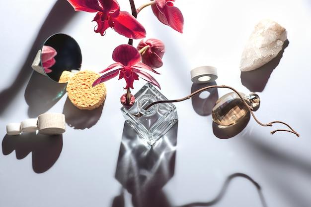 Composição geométrica com flor da orquídea e círculos de diferentes materiais.