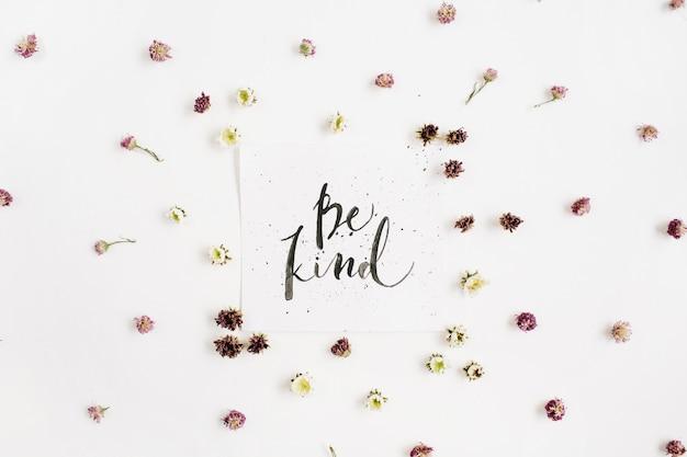 Composição minimalista com palavras be kind escritas em estilo caligráfico em papel com botões de flores silvestres na superfície branca