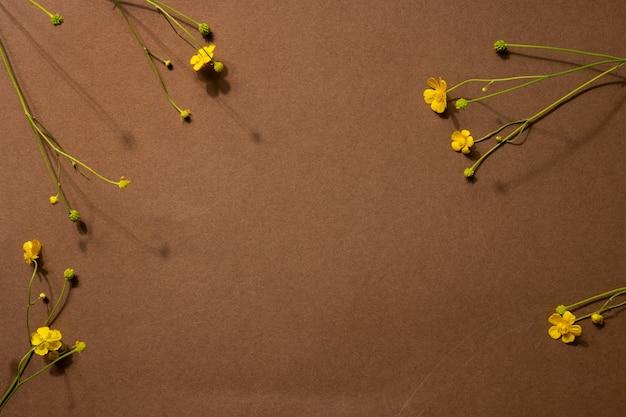 Composição minimalista de natureza morta em marrom bege com material natural: pedra e flor amarela, conceito de design de arte moderna abstrata, visão lateral