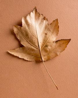 Composição monocromática de natureza morta com folha