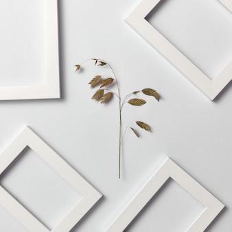 Composição natural vegetativa com quadros vazios para o seu texto e ramo de folha orgânico em uma parede cinza clara. vista do topo.