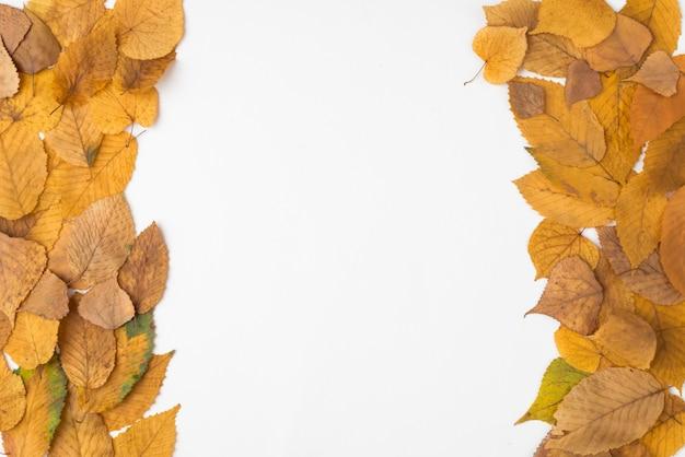 Composição paralela de folhas de outono amarelas e marrons