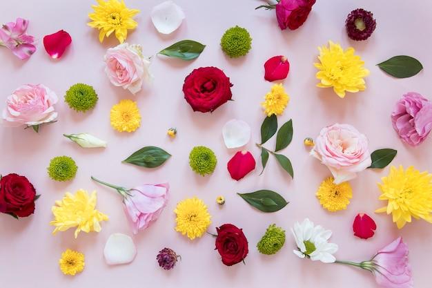 Composição plana de lindas flores Foto Premium
