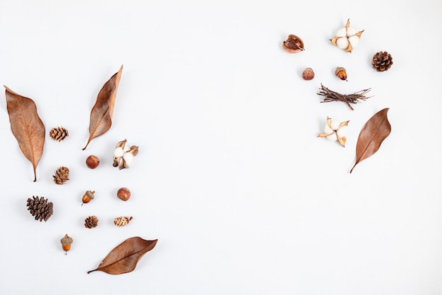 Composição plana de outono com cones e folhas