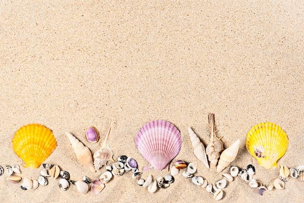 Composição plana leiga com conchas do mar colorido e corais na areia, configuração plana, cópia espaço.