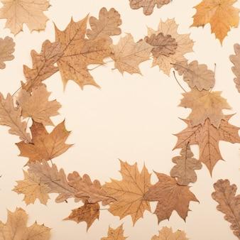 Composição plana leiga de outono. outono, outono, plano de fundo do dia de ação de graças. conceito da temporada de outono. flatlay, vista superior