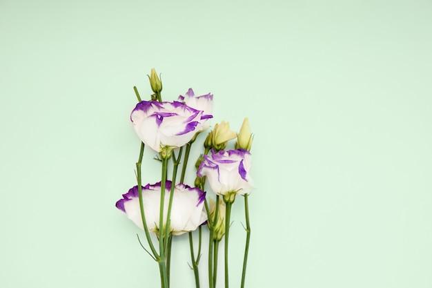 Composição romântica floral. flores da primavera em um fundo pastel. vista superior, copie o espaço
