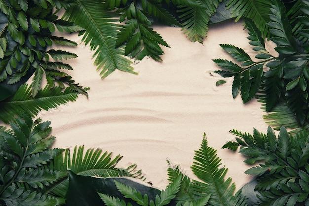 Composição tropical feita de folhas de palmeira ou samambaia