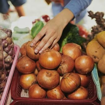 Comprando cebola fresca