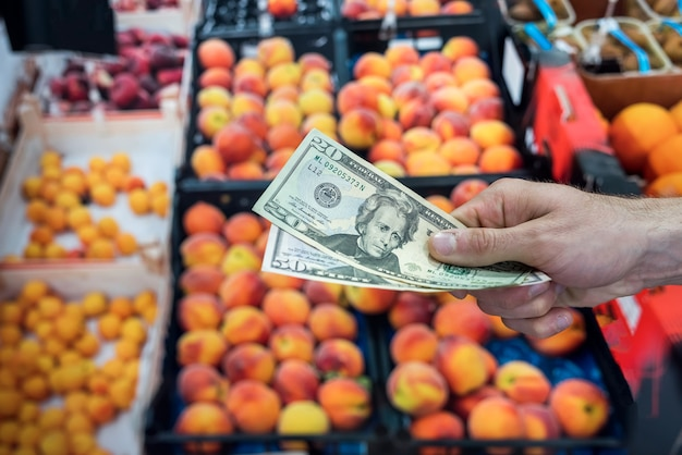 Comprando frutas no supermercado. o comprador dá dinheiro pela compra. dólar na mão