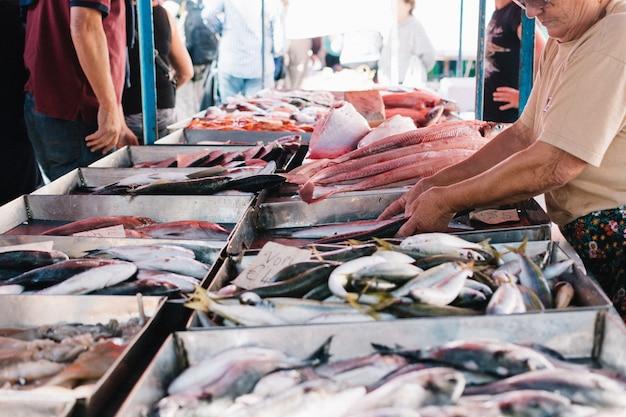 Compras no mercado de peixe