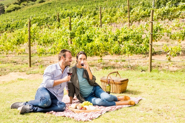 Comprimento total do casal tomando vinho na vinha