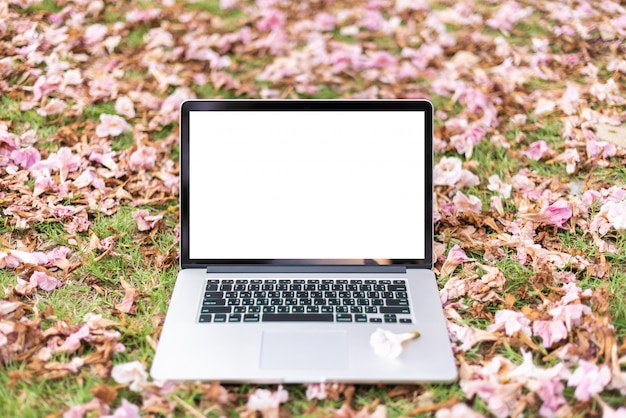Computadores portáteis com flores cor-de-rosa e fundo da grama verde.
