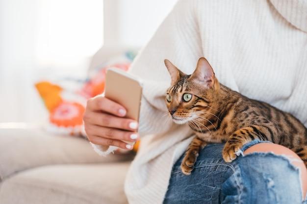 Comunicação entre animais de estimação e proprietários amizade humana e animal. garota mostrando uma foto no telefone para o gato dela.