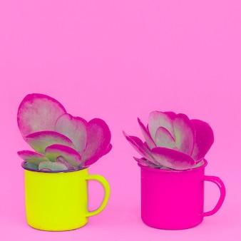 Conceito criativo mínimo colorido de cacto. cacto em uma xícara