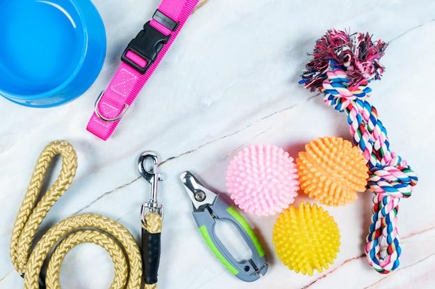 Conceito de acessórios para animais de estimação. brinquedo, colares, tesoura de unha e trelas com espaço para texto