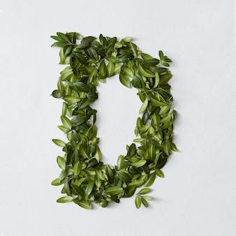 Conceito de alfabeto inglês. alfabeto isolado. letras abc de folhas verdes. letra d representada com folhas verdes. símbolo d em branco.