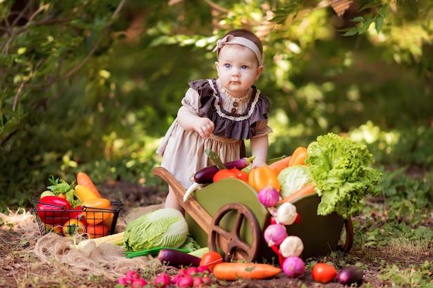 Conceito de alimentação saudável. menina jardineiro recolhe uma colheita de legumes. entrega de produtos