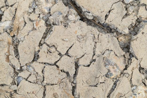 Conceito de amar o mundo, amar o meio ambiente seca árida