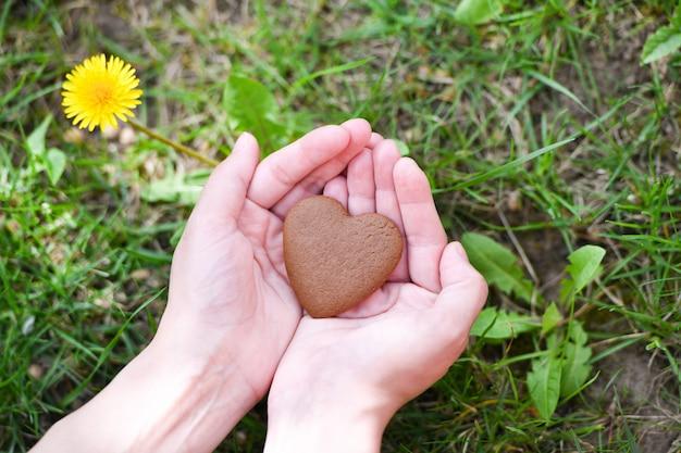 Conceito de amor e dia dos namorados. mão masculina em forma de coração no fundo do campo de grama verde