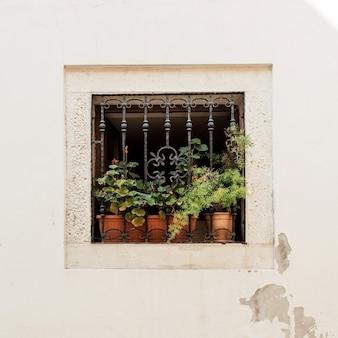 Conceito de arquitetura mínima. pequena janela quadrada com grade de ferro e potes de barro com plantas verdes em prédio branco