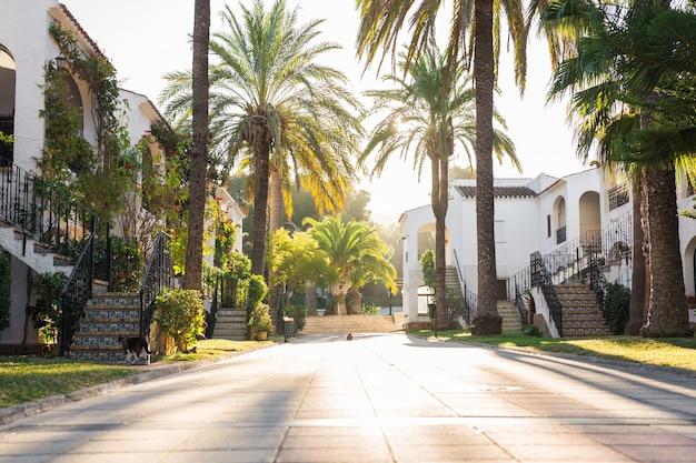 Conceito de casa, construção e arquitetura - rua de grandes casas suburbanas no verão.