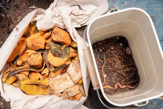 Conceito de compostagem de natureza morta