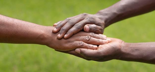 Conceito de comunidade com a natureza de perto