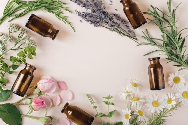 Conceito de cosméticos naturais e ervas curativas, lugar de vista superior para texto
