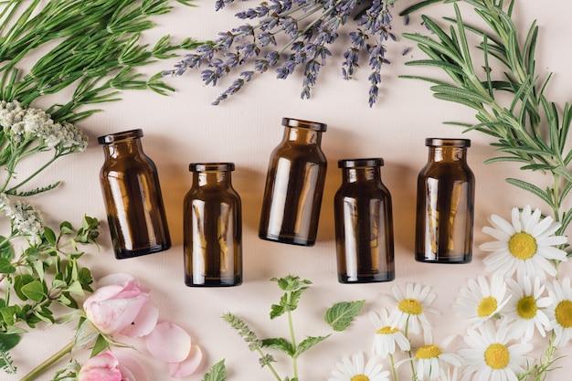Conceito de cosméticos naturais e ervas curativas, vista de cima