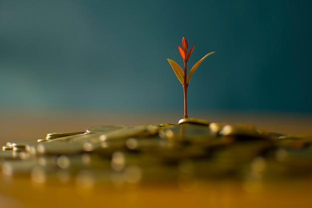 Conceito de crescimento da moeda